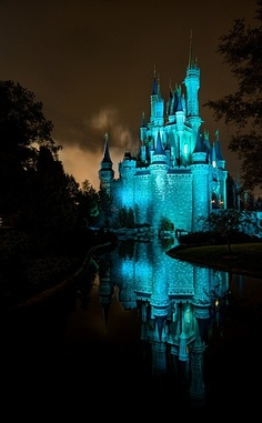 CASTILLO DISNEY WORLD -ORLANDO-